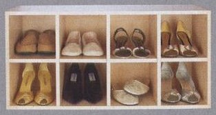 Internal Wardrobe Shoe Storage Box